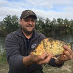 gold colored white fish with catcher
