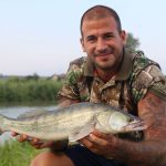 beautiful zander from the fishing camp serravalle in Italy